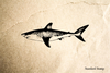 Shark Rubber Stamp