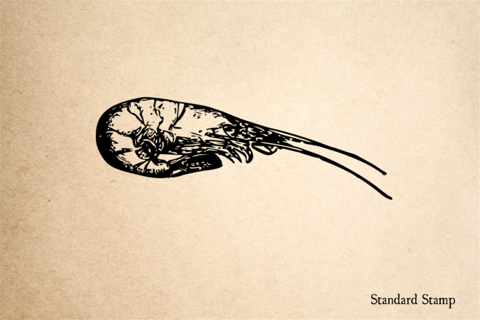 Shrimp Curled Rubber Stamp