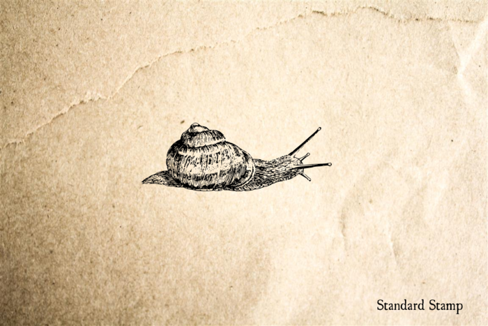 Snail Rubber Stamp