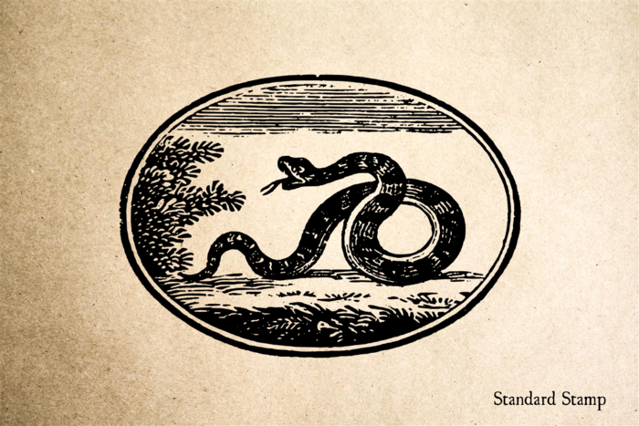 Snake in Circle Rubber Stamp
