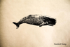Sperm Whale Rubber Stamp