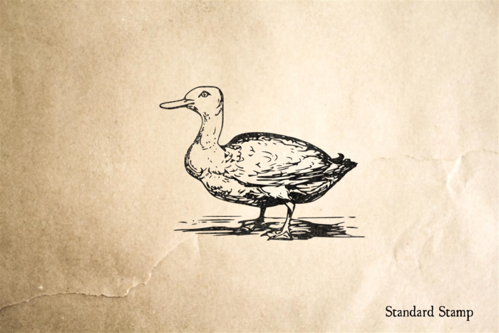 Vintage Duck Rubber Stamp