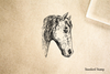 Vintage Horse Head Rubber Stamp