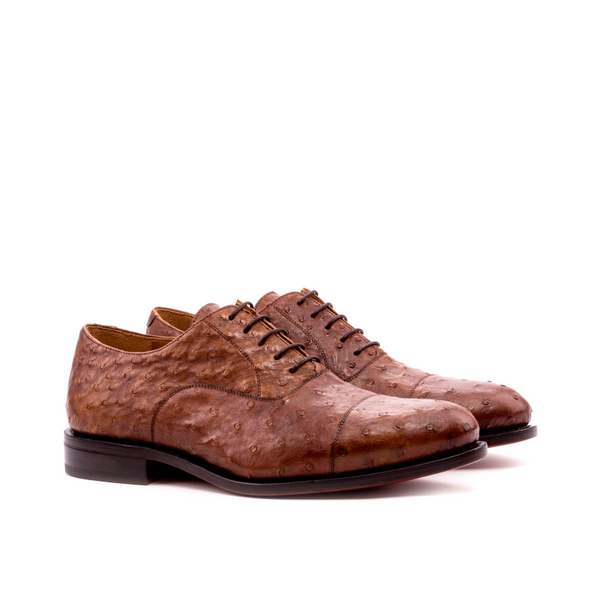 Darwin Oxford Ostrich shoes