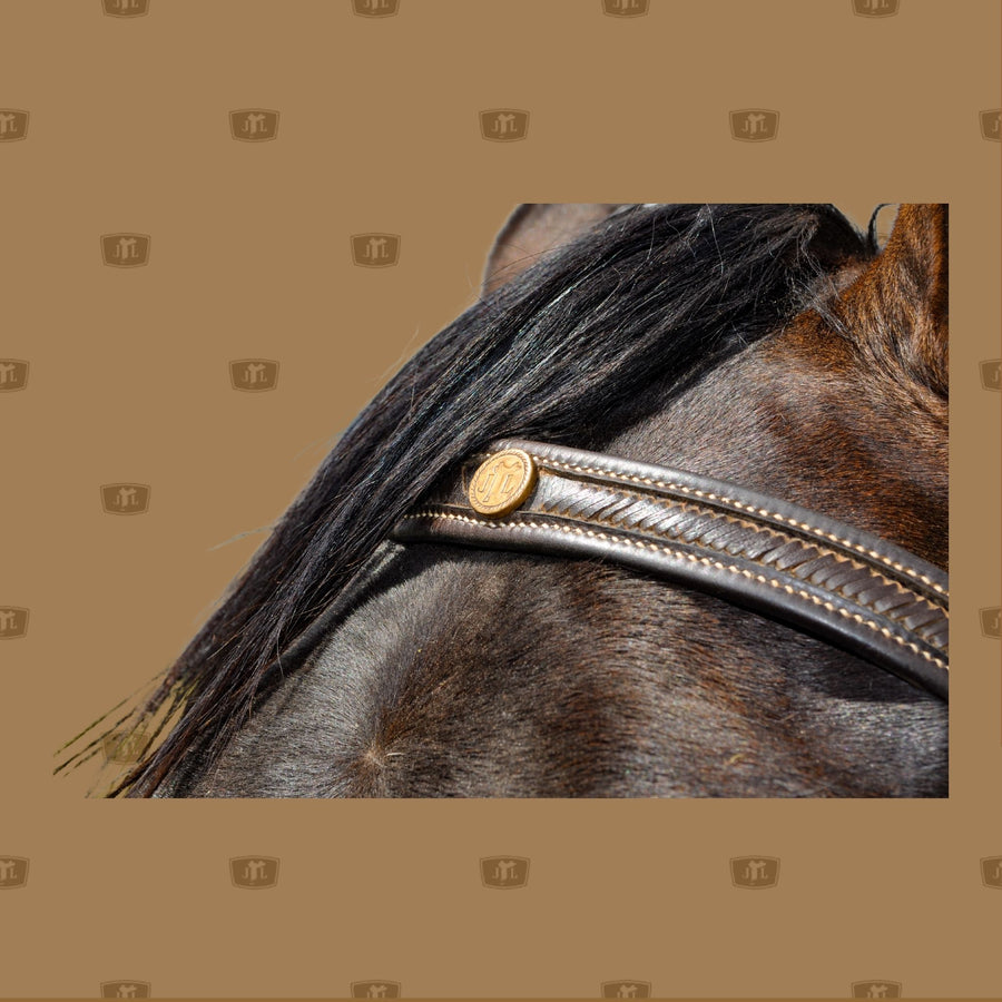 Laced Forehead bridle handcrafted by John Lordan
