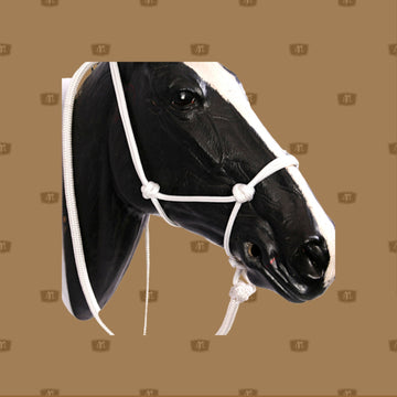 Horse Rope Halter with Lead Combo  Rope Halter 8mm with 7 foot lead