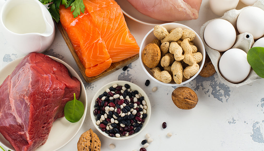 healthy assortment of protein for muscle gain and fat loss