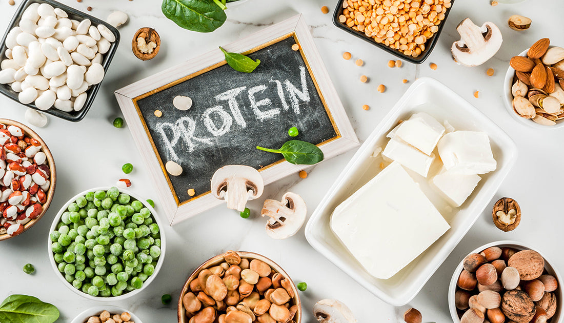 An assortment of nuts, beans, veggies, & dairy foods that are packed with protein