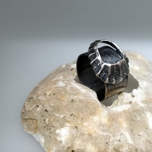 Godrevy limpet shell adjustable ring in oxidised silver handmade by Sharon McSwiney