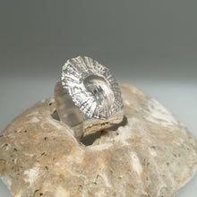 Load image into Gallery viewer, Marazion limpet shell ring in sterling silver handmade by Sharon McSwiney