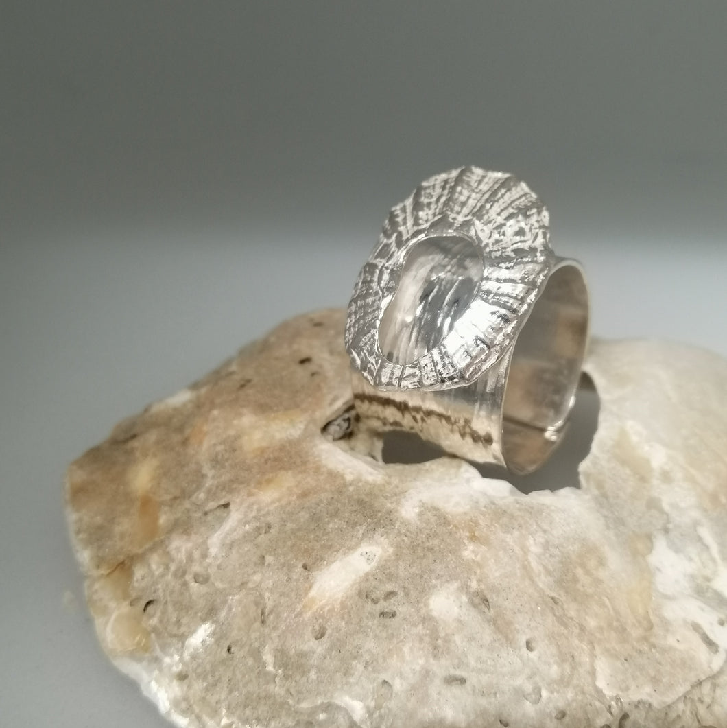 Marazion limpet shell ring in sterling silver handmade by Sharon McSwiney