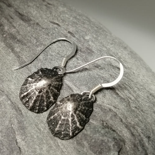 Oxidised silver Porthminster beach limpet shell earrings handmade by Sharon McSwiney
