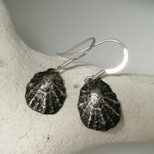 Load image into Gallery viewer, Porthminster Beach oxidised limpet earrings