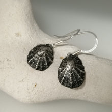 Load image into Gallery viewer, Oxidised silver Porthminster beach limpet shell earrings handmade by Sharon McSwiney