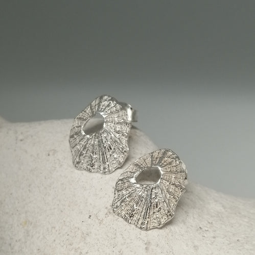 Sennen Cove limpet shell earrings in sterling silver handmade by Sharon McSwiney