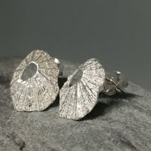Load image into Gallery viewer, Sennen Cove limpet shell earrings in sterling silver handmade by Sharon McSwiney