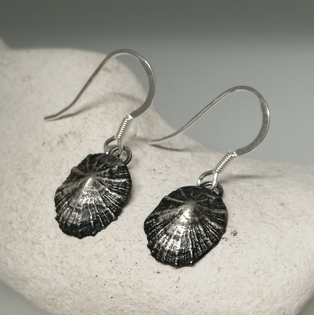 Oxidised small Marazion limpet shell drop earrings handmade by Sharon  McSwiney