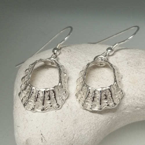 Godrevy limpet shell silver drop earrings handmade by Sharon McSwiney