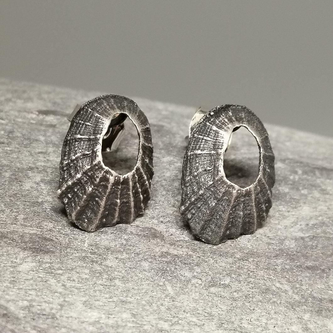 Oxidised silver tiny Marazion limpet shell studs handmade by Sharon McSwiney