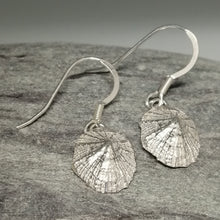 Load image into Gallery viewer, Small Marazion silver limpet shell drop earrings handmade by Sharon McSwiney
