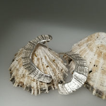 Load image into Gallery viewer, St Ives limpet fragment earrings