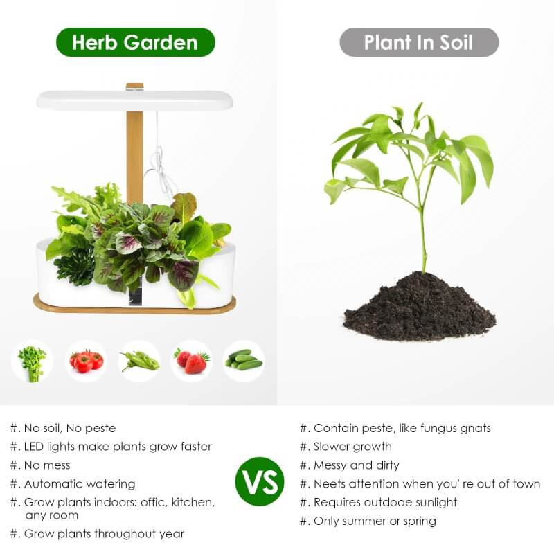 Cheap Hydroponic System
