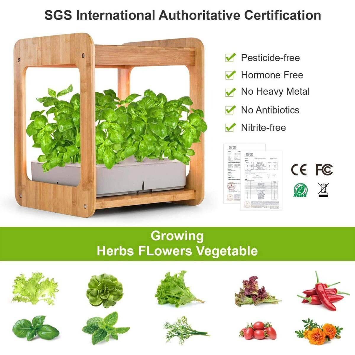 Hydroponics Systems For Beginners