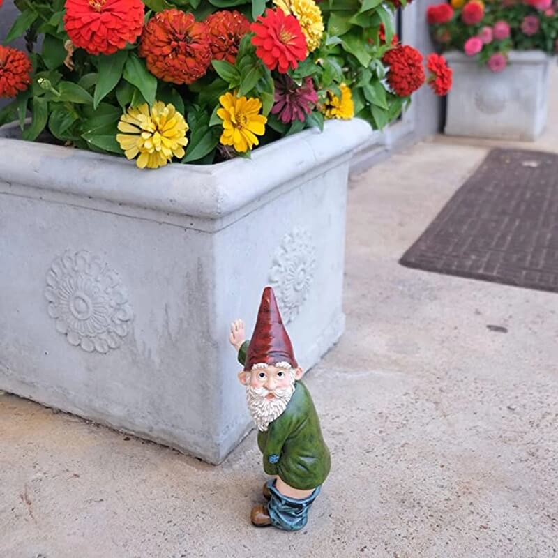 What Are Garden Gnomes For