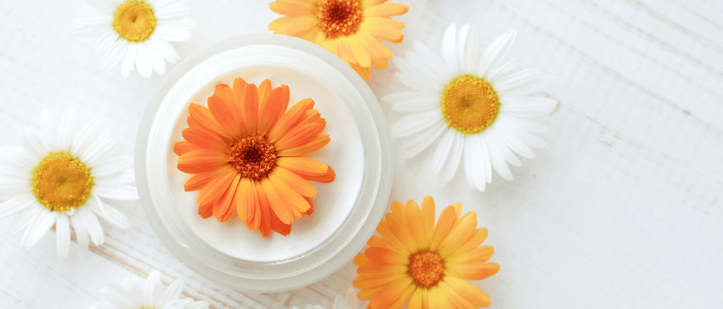 Chamomile & Calendula – Nature's Blessing For Your Little One