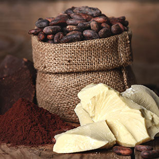 Cocoa Seed Butter