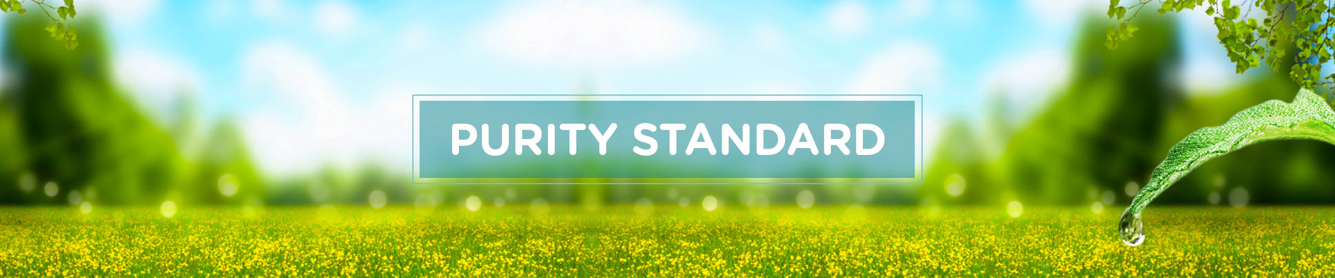Purity Standard for Natural baby Products followed by Mommypure