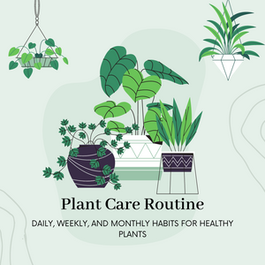 Observe, Maintain, Sustain : A Daily, Weekly, & Monthly Plant Care Guide