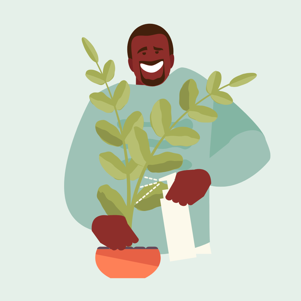 guy cleaning plants