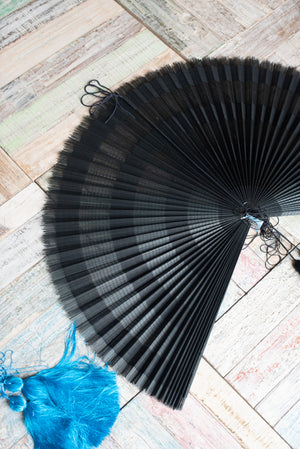 Fan Display