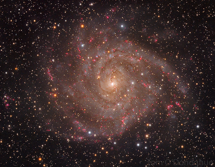 The IC342 Galaxy