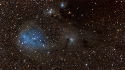 IC 447 Reflection Nebula in Monoceros