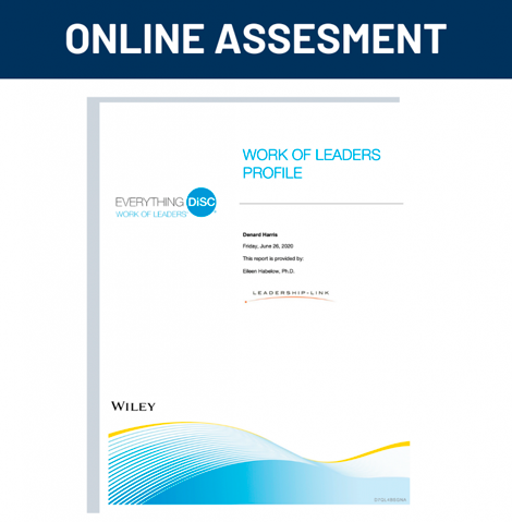 Online Assesment for Work of Leaders