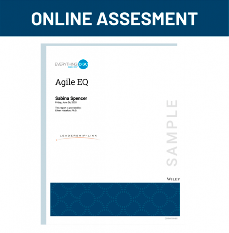 Online Assesment for Agile EQ