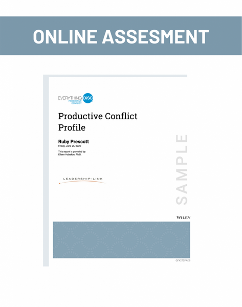 Online Assesment for Productive Conflict