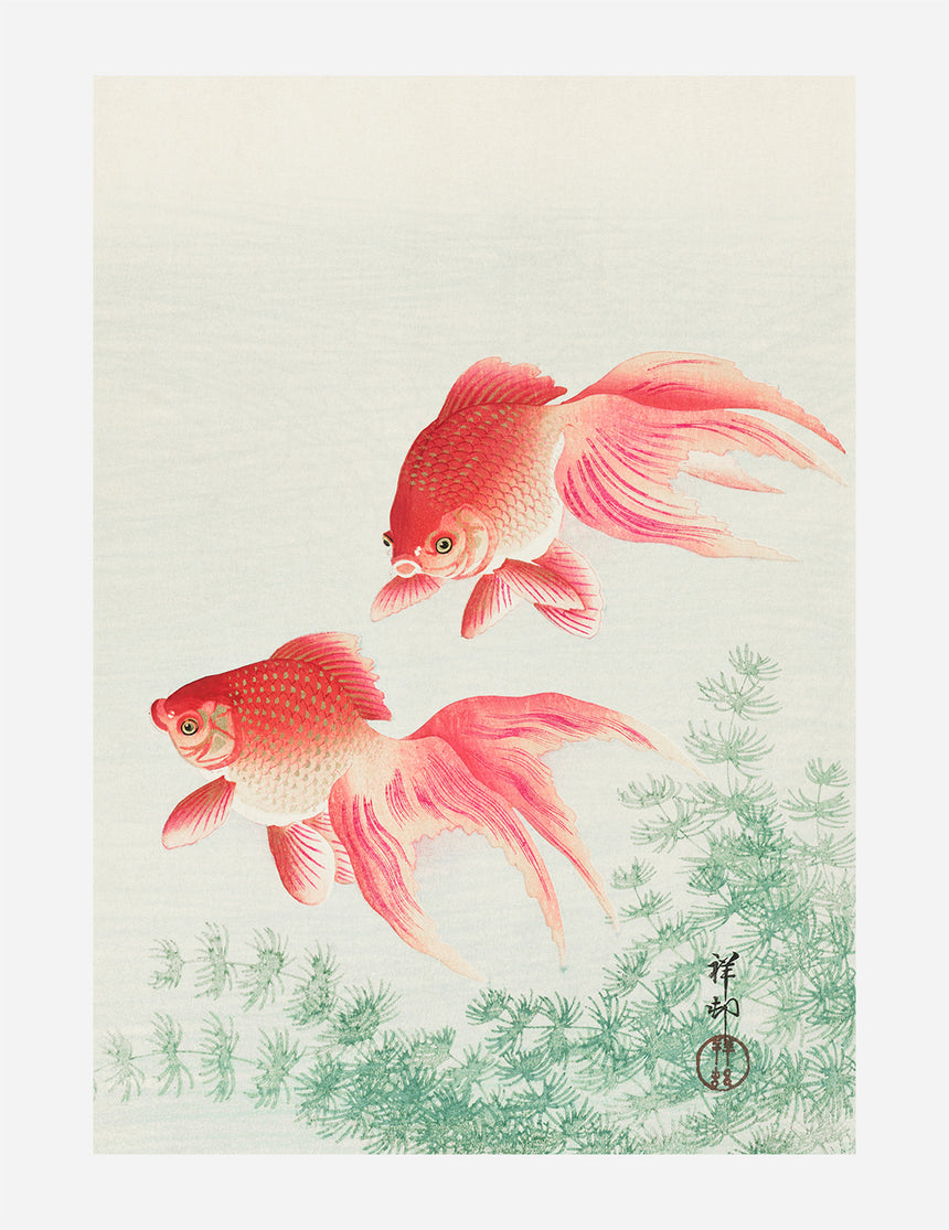 Two Veil Goldfish (1926)