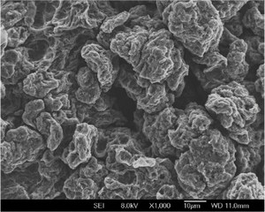 Reduced Graphene Oxide (1 Gram)
