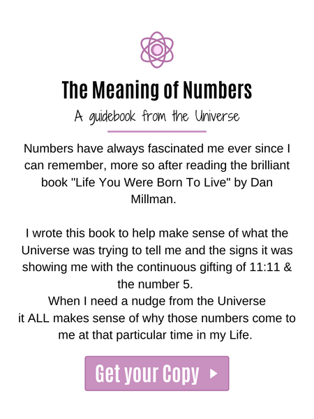 PRE-ORDER The Meaning of Numbers (Paperback)