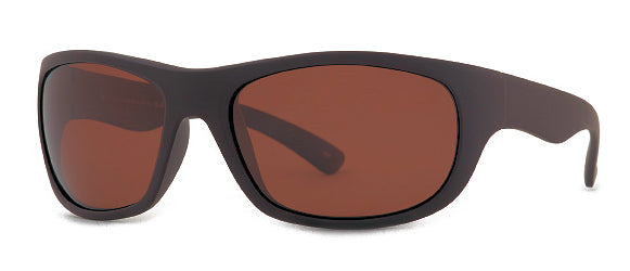 INVU A2711D Polarized sunglasses