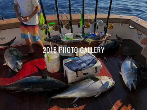 2018 Photo Gallery Cover
