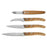 Knife Set Amefa Forest Wood (4 pcs)