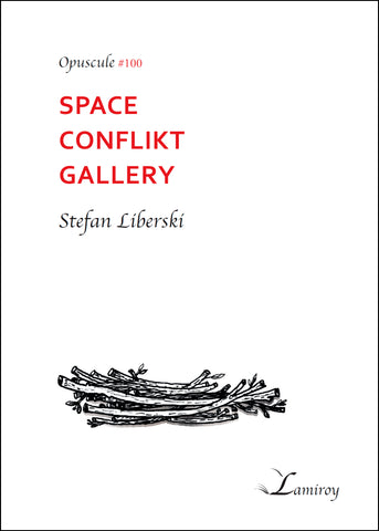 #100 Space Conflikt Gallery
