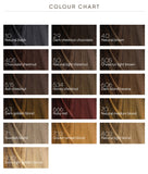 BioKap Rapid Permanent Hair Dye (16 Shades)