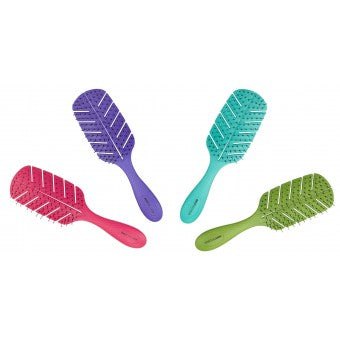 4 Detangler brushes, in pink, purple, green and blue
