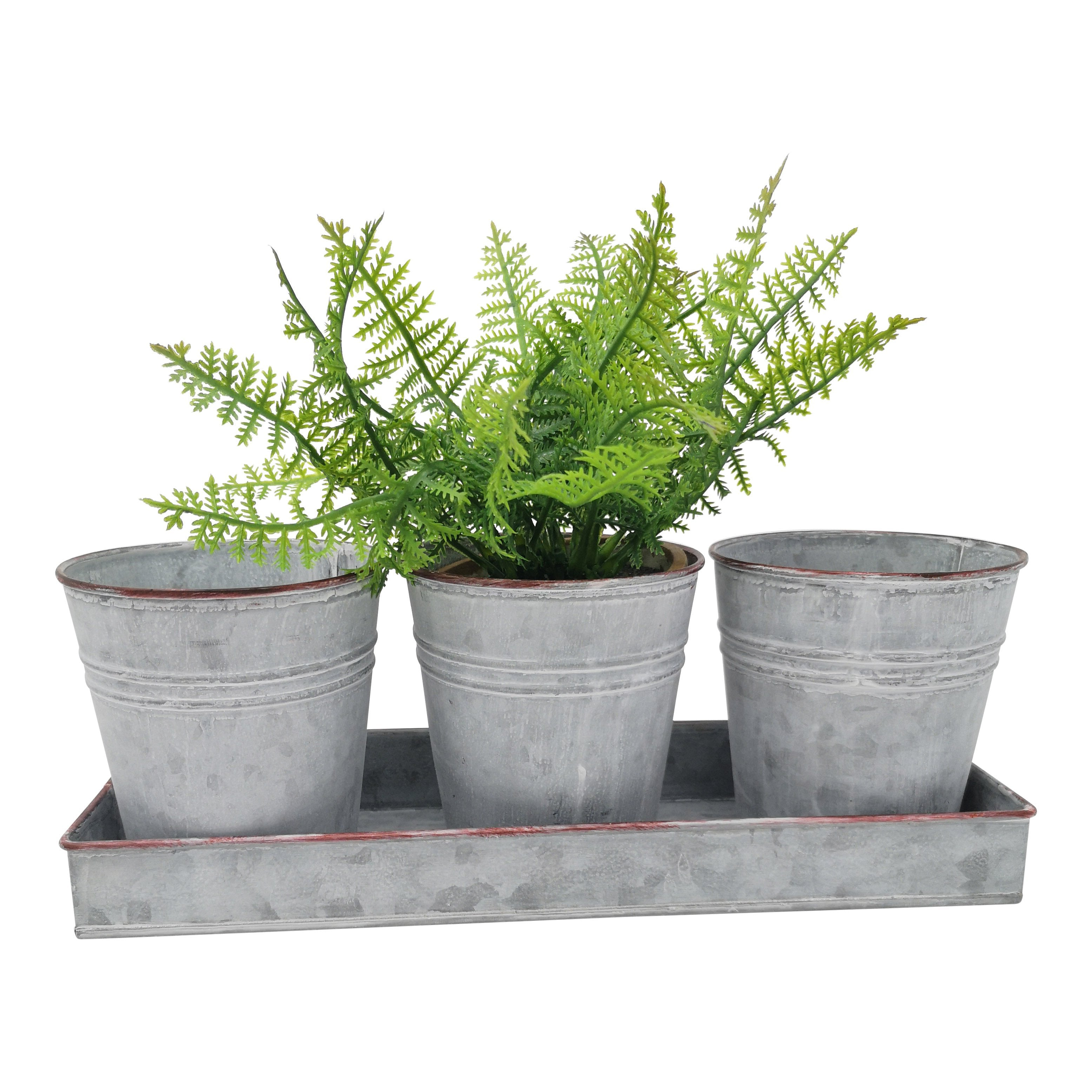 Zinc Tray with 3 Pots