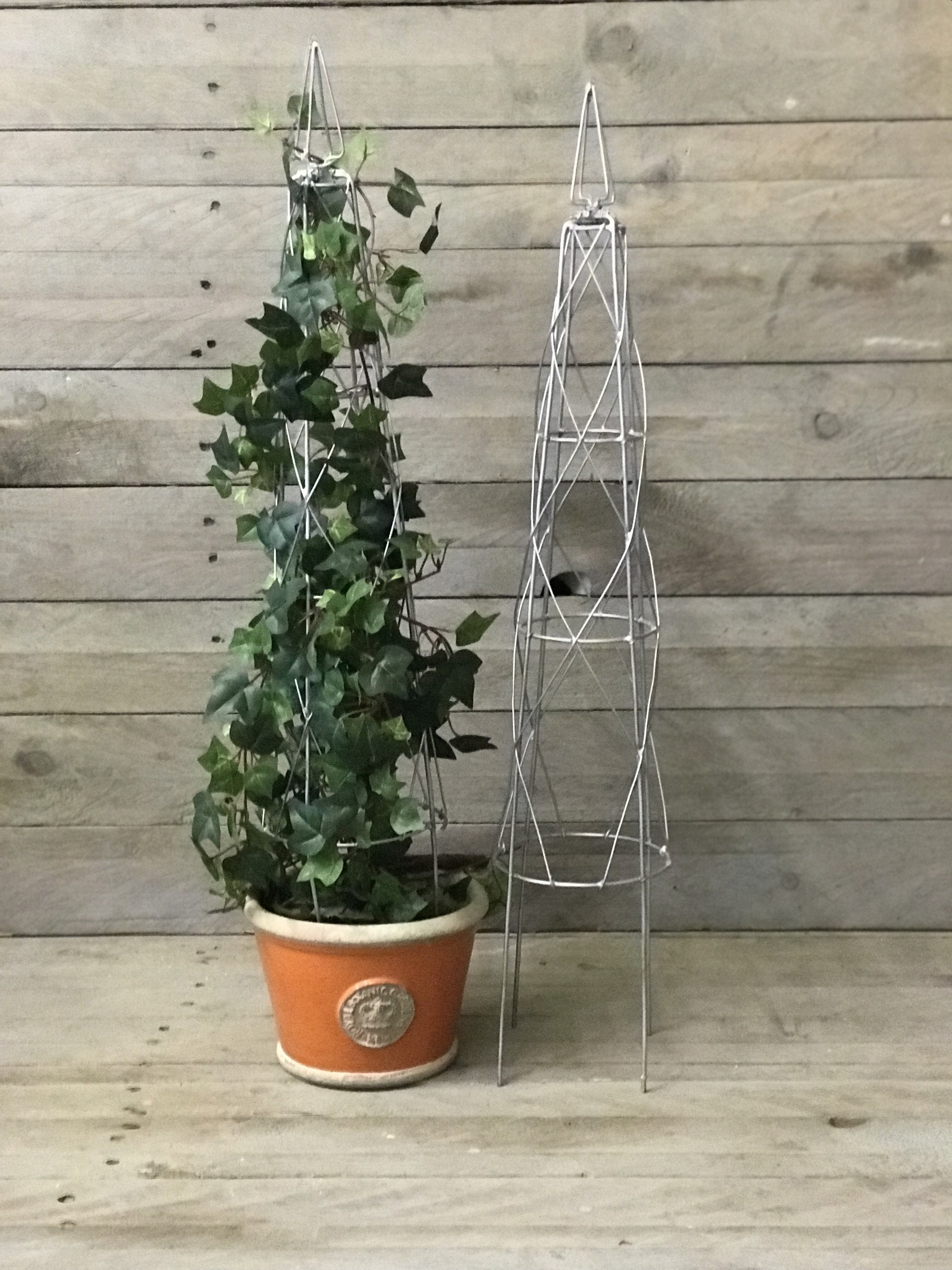 Wire Topiary Frame